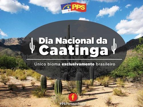 Dia Nacional Da Caatinga.