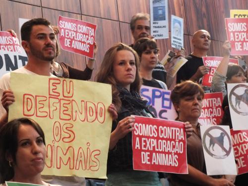 Audiência pública discute instalação de delegacia para proteção animal